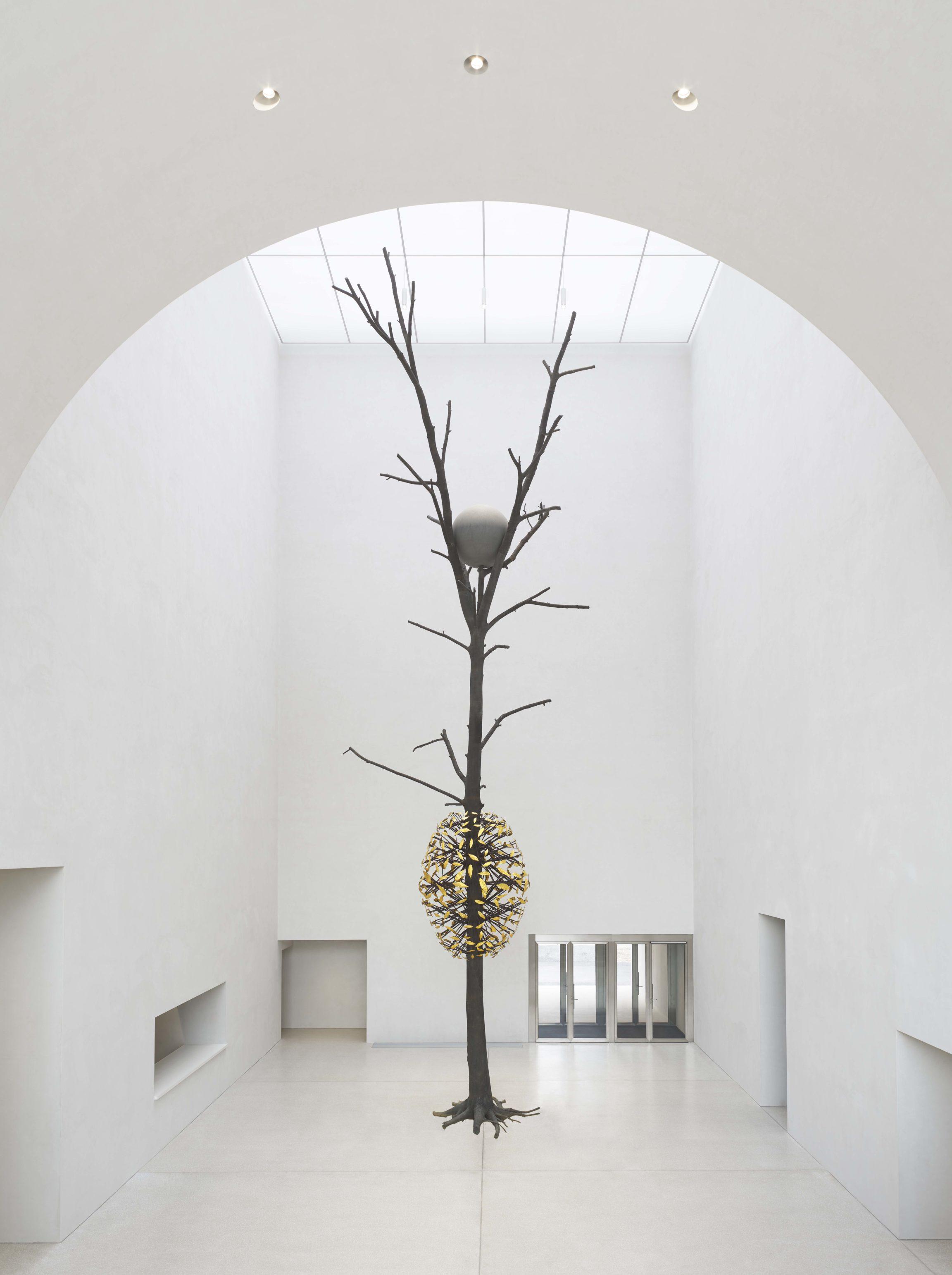 Giuseppe Penone, Luce e ombra, 2011