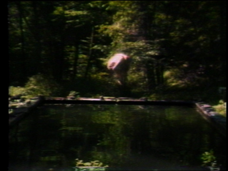 Bill Viola, The Reflecting Pool (tiré de The Reflecting Pool - Collected Work 1977-80), 1977-1979