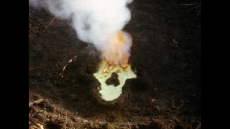 Ana Mendieta, Fundamento Palo Monte: Silueta Series (Gunpowder Work), 1980