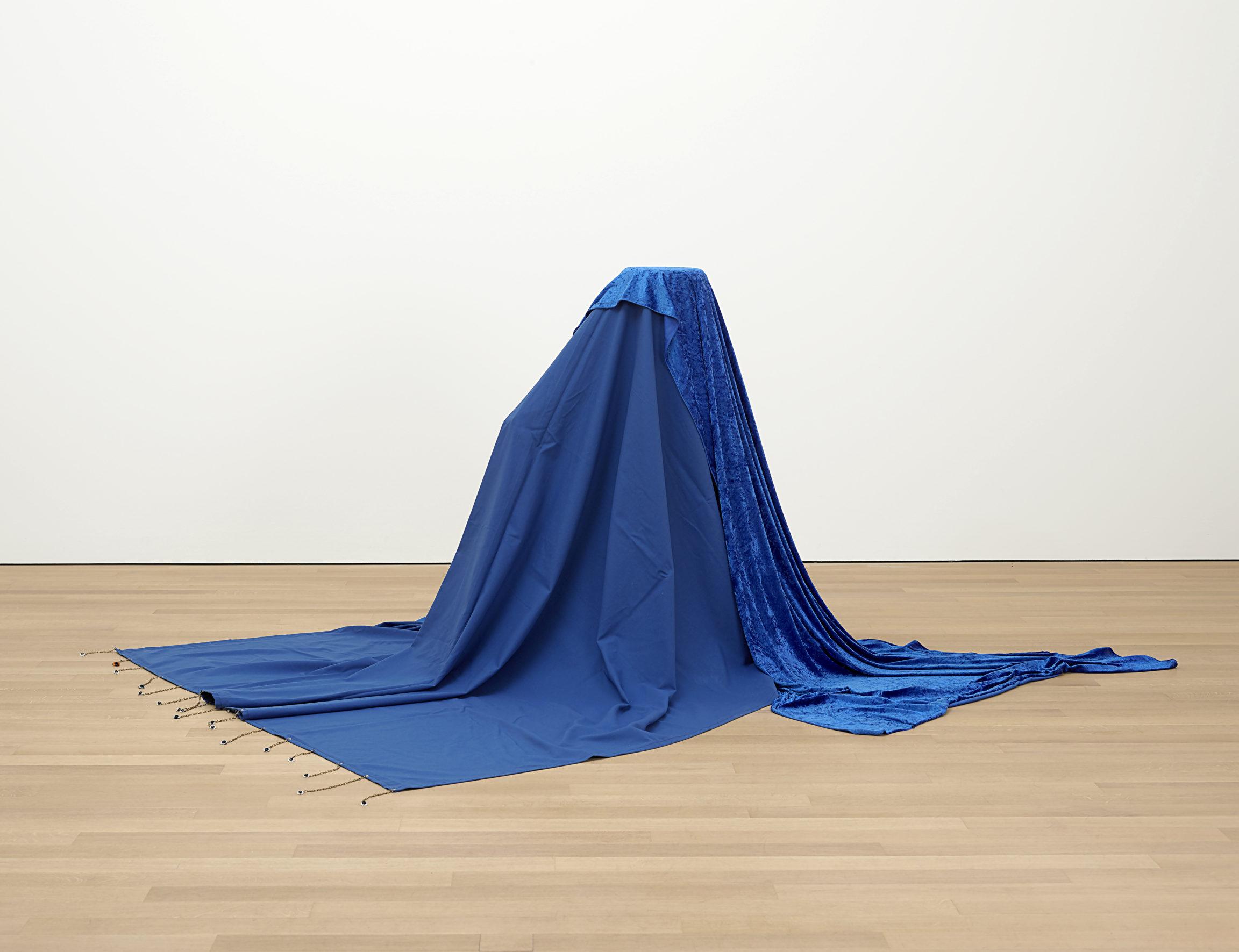 Delphine Coindet, Le cyclope, 2011