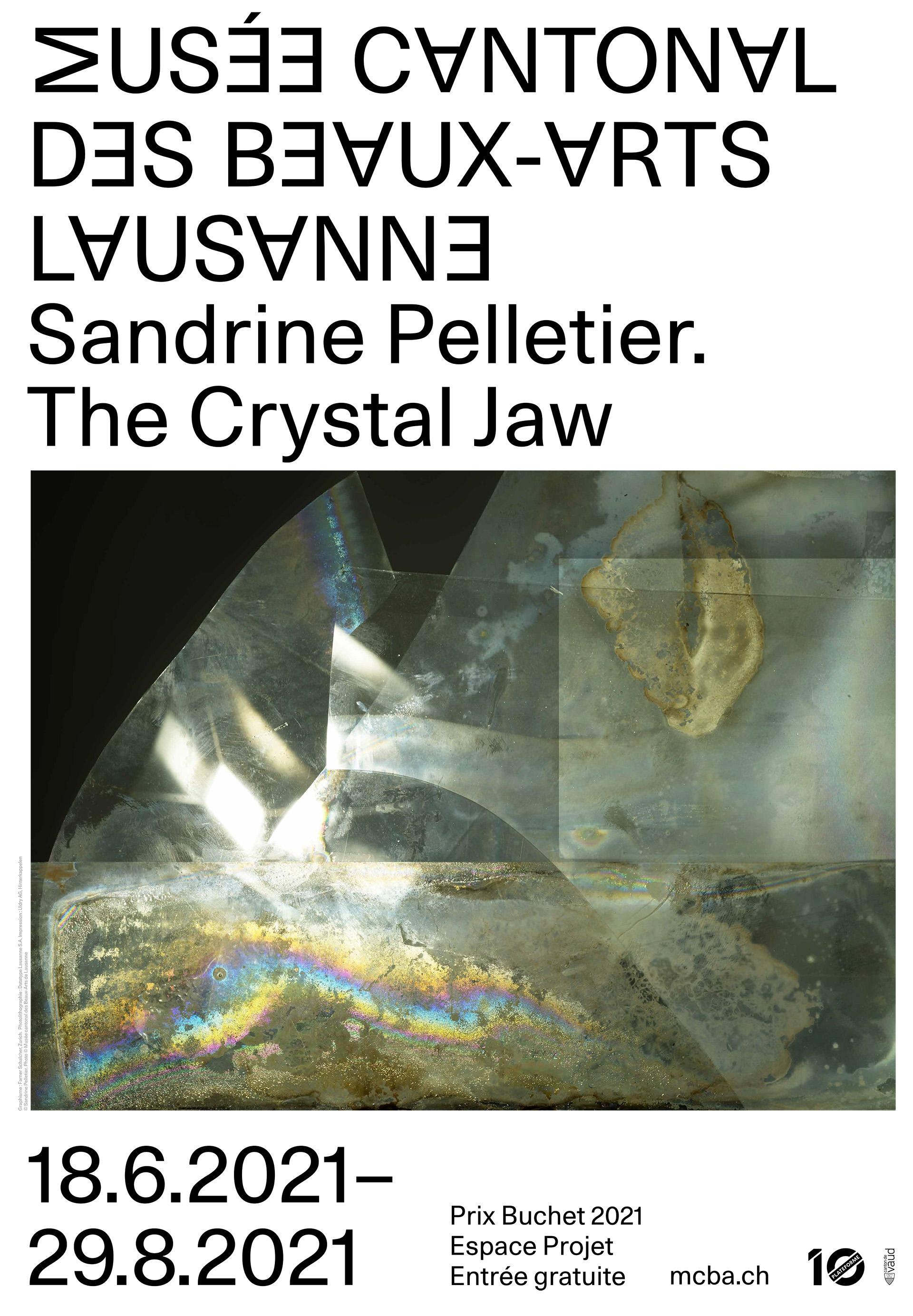 Sandrine Pelletier. The Crystal Jaw <br>Prix Gustave Buchet 2021
